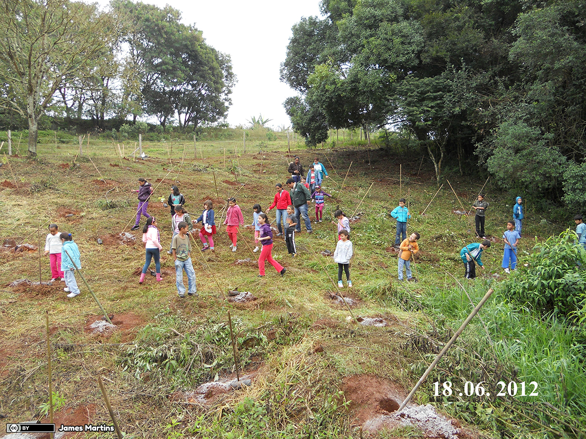 Reforestation_with_children_students_in_june_2012_-_panoramio 1200 lic