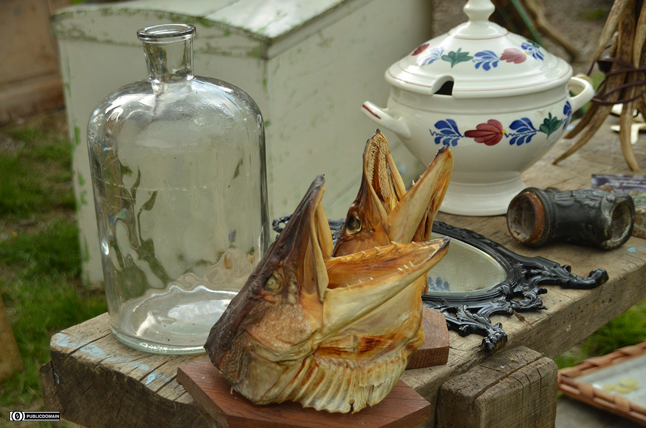 glass-meal-bottle-fish-gingham-fish-head-589373-pxhere